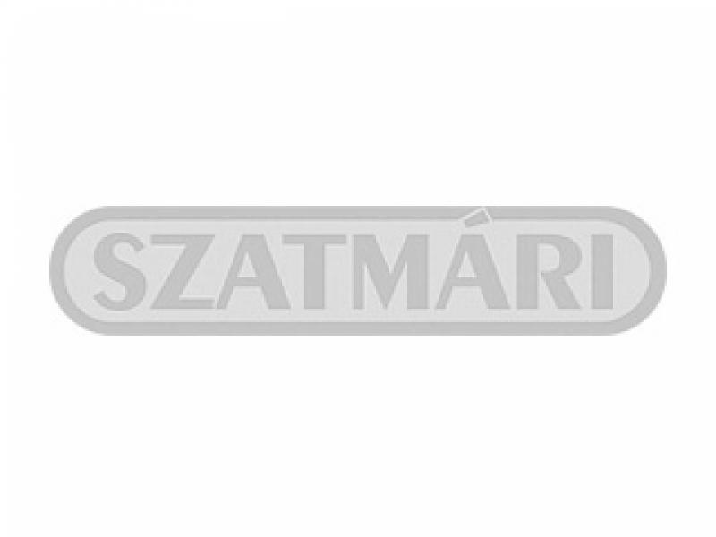 Szatmári